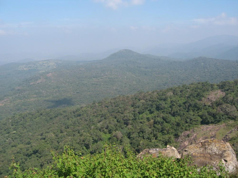 Wild Life Sanctuary near Bangalore Mysore highway.